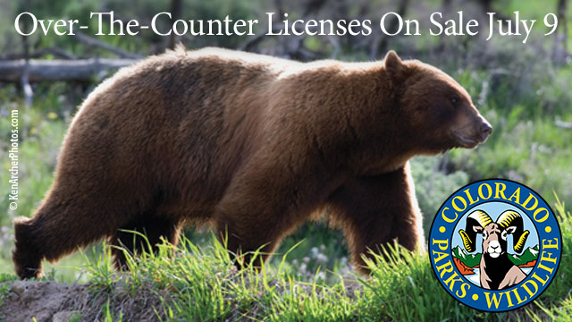 Get a colorado bear license wolf creek outfitters for Big 5 fishing license